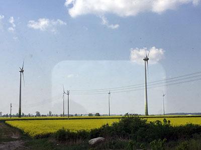 菜の花畑沢山!風力発電もたくさん!